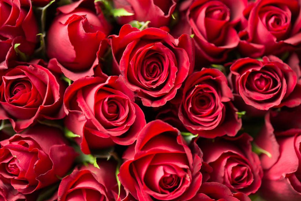 Blumenstrauß verschicken